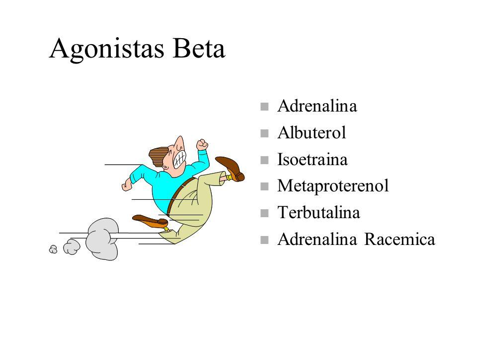 Agonistas Beta n Adrenalina n Albuterol n Isoetraina n Metaproterenol n Terbutalina n Adrenalina Racemica
