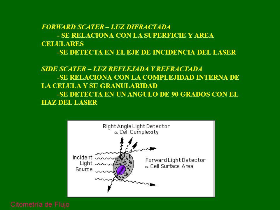 MARCACION DE CELULAS CON ANTICUERPOS FLUORESCENTES Se utilizan, generalmente, inmunoglobulinas monoclonales contra antígenos de la supercicie de las celulas, marcadas con colorantes fluorescentes.