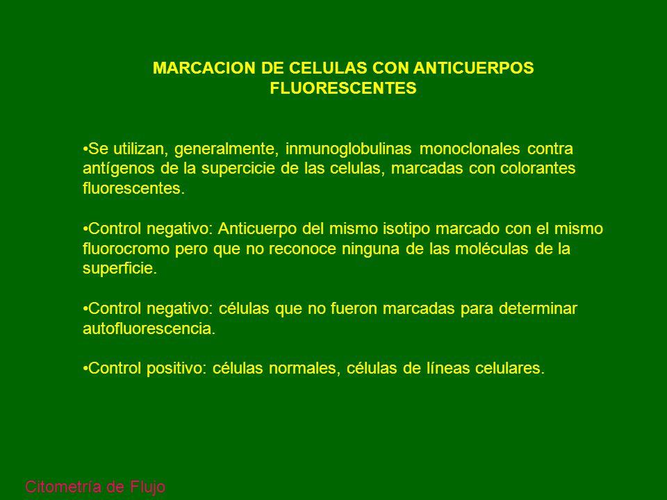 Fluorocromos utilizados Citometría de Flujo FL1 FL2 FL3 FL4