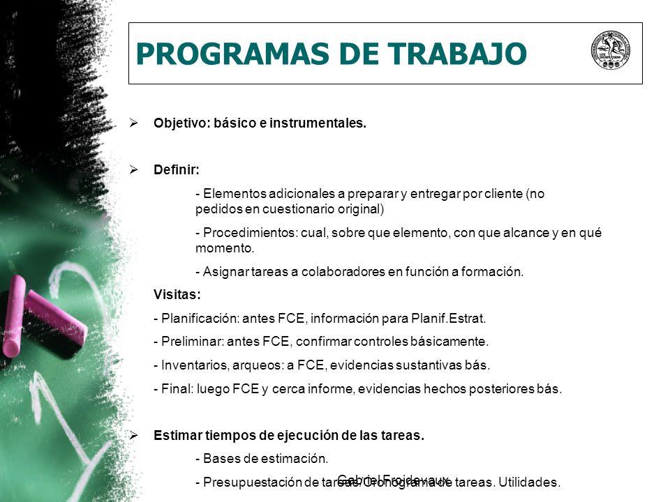 Gabriel Froidevaux PROGRAMAS DE TRABAJO Objetivo: básico e instrumentales. Definir: - Elementos adicionales a preparar y entregar por cliente (no pedi