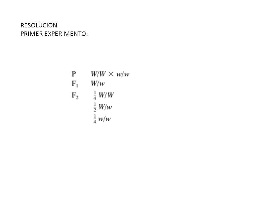RESOLUCION PRIMER EXPERIMENTO: