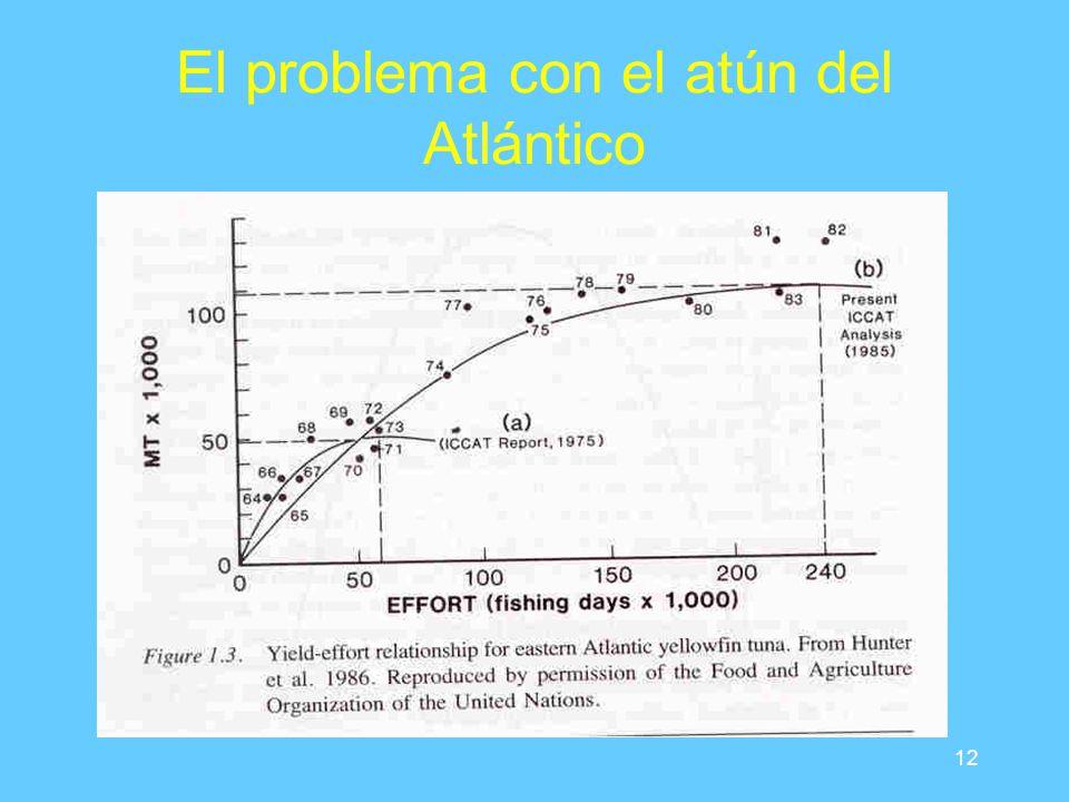 12 El problema con el atún del Atlántico