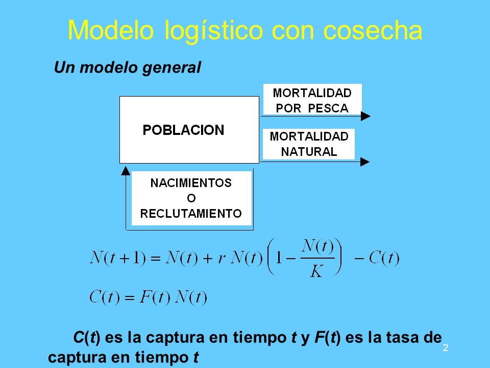 3 Modelo logístico con cosecha Comportamiento por simulación 0.05 Inicialmente se pueden obtener capturas altas, no sustentables Un valor intermedio de F produce máxima captura sostenible La población tarda un tiempo considerable en alcanzar equilibrio