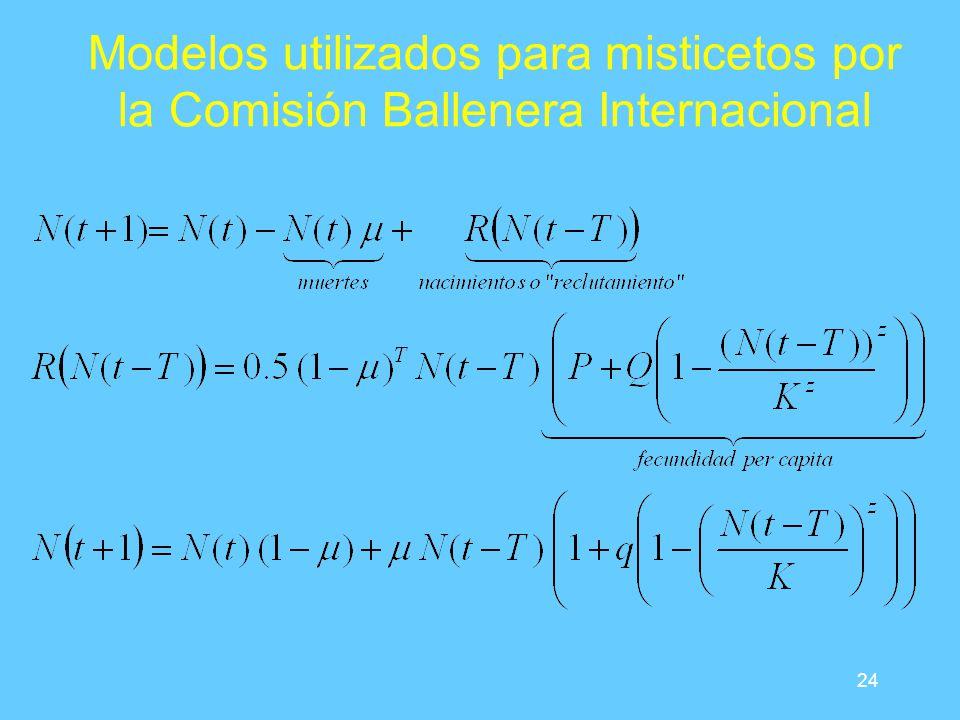 24 Modelos utilizados para misticetos por la Comisión Ballenera Internacional