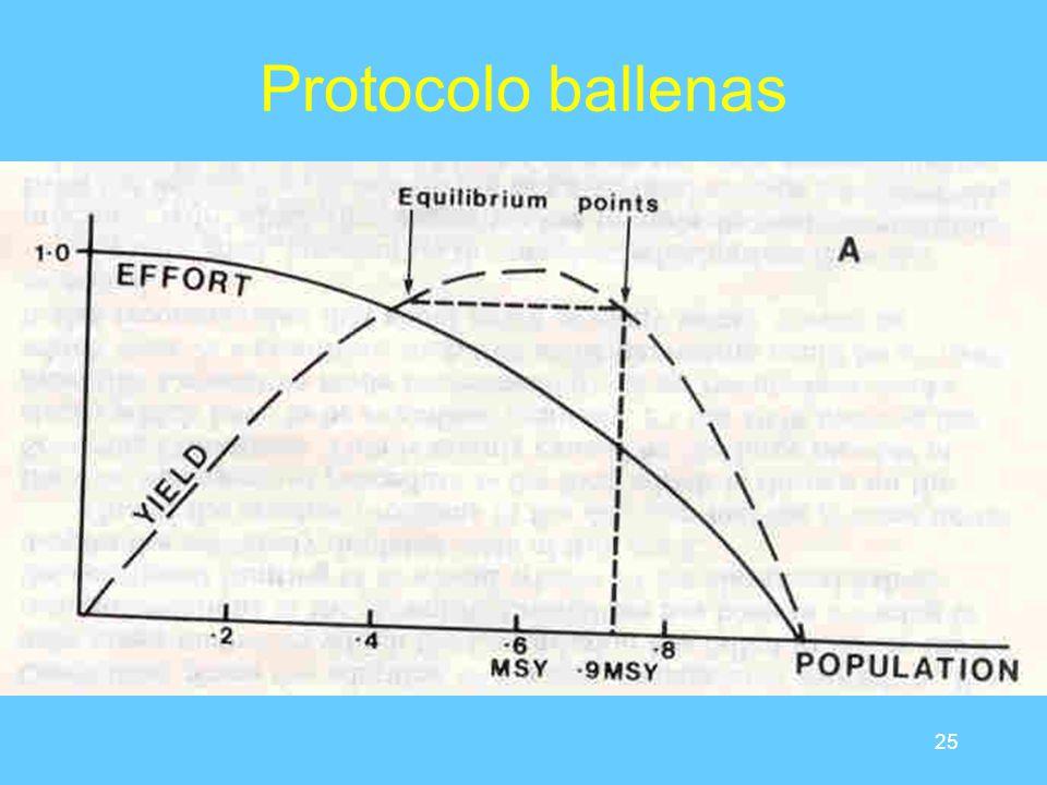 25 Protocolo ballenas