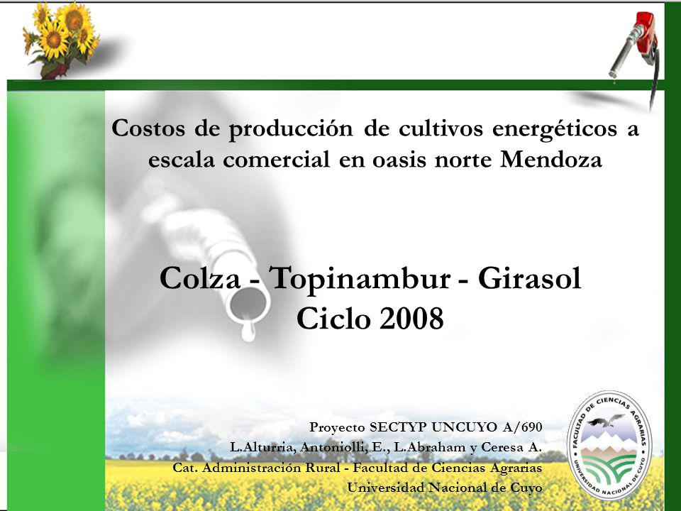 Costos de producción de cultivos energéticos a escala comercial en oasis norte Mendoza Proyecto SECTYP UNCUYO A/690 L.Alturria, Antoniolli, E., L.Abra