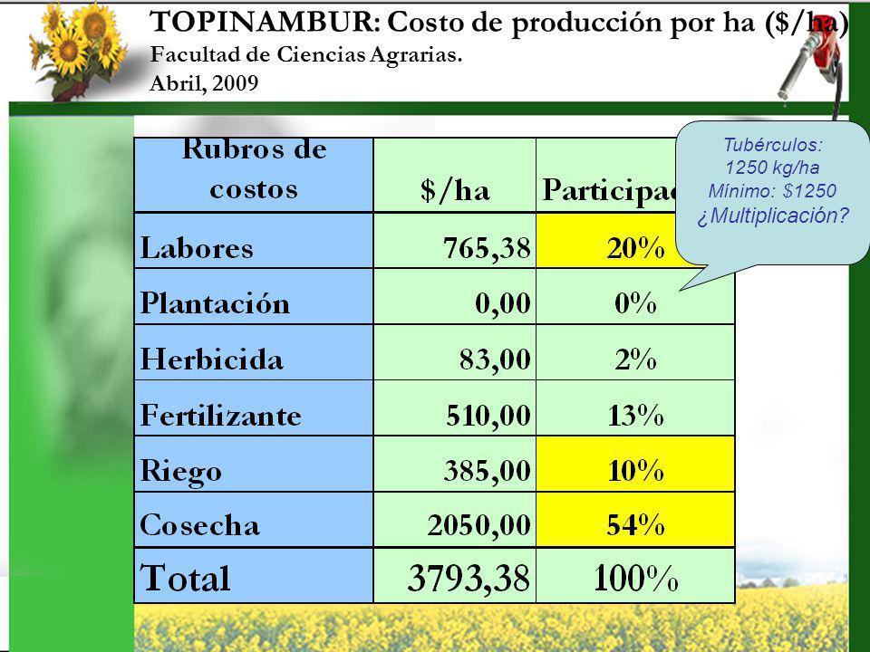 TOPINAMBUR: Costo de producción por ha ($/ha) Facultad de Ciencias Agrarias. Abril, 2009 Tubérculos: 1250 kg/ha Mínimo: $1250 ¿Multiplicación?