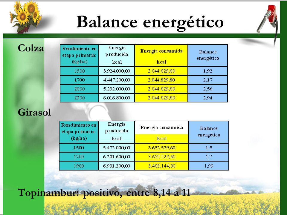 Balance energético Colza Girasol Topinambur: positivo, entre 8,14 a 11