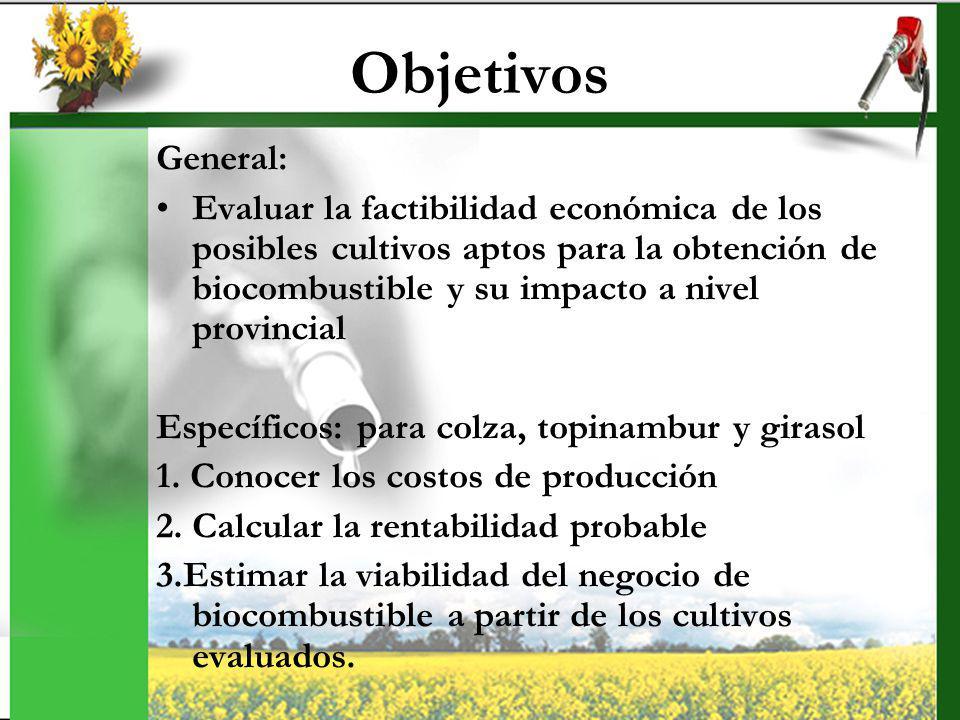 Objetivos General: Evaluar la factibilidad económica de los posibles cultivos aptos para la obtención de biocombustible y su impacto a nivel provincia