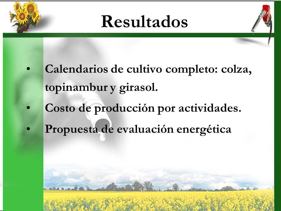 Resultados Calendarios de cultivo completo: colza, topinambur y girasol. Costo de producción por actividades. Propuesta de evaluación energética