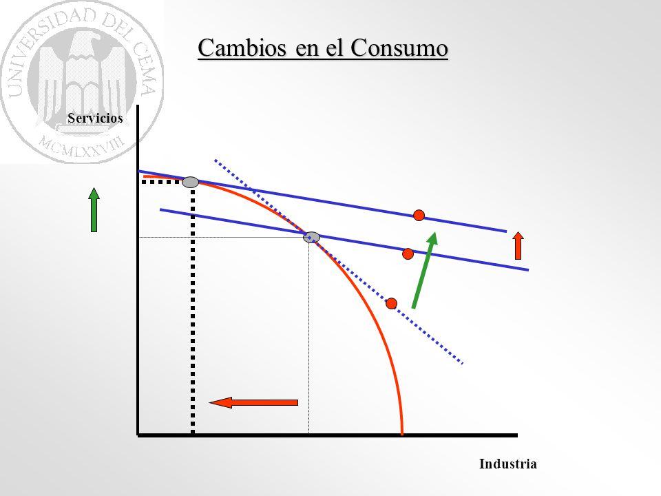 Industria Servicios Cambios en el Consumo