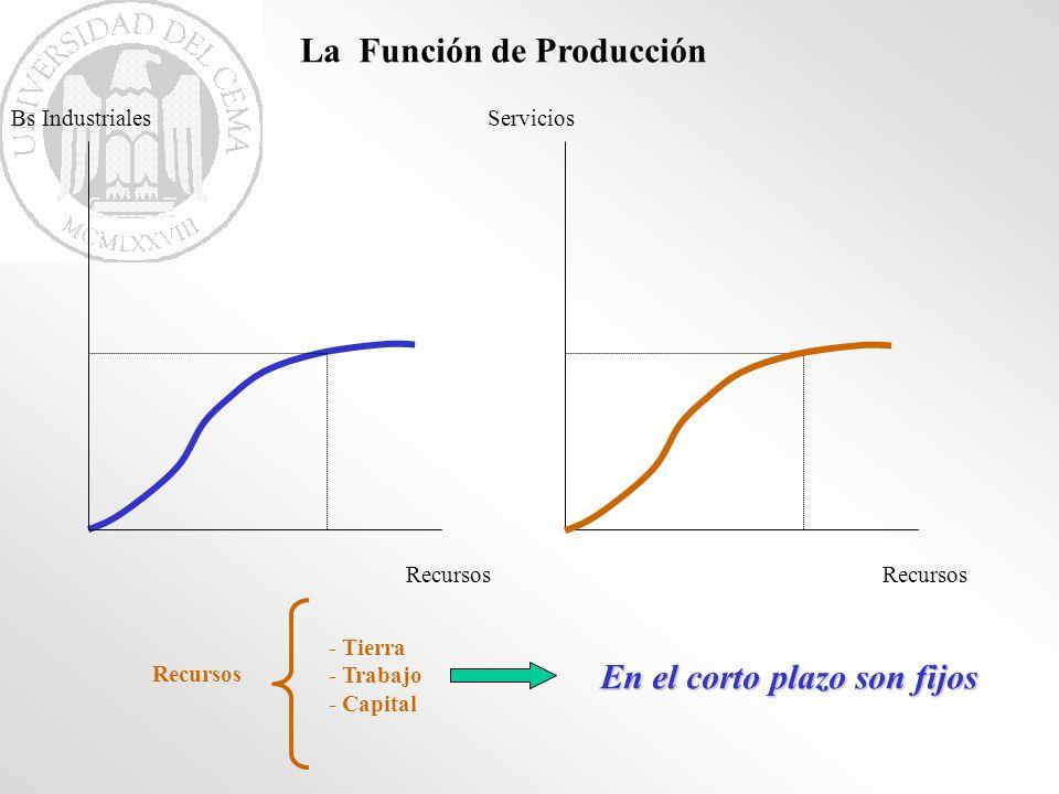 Recursos Bs Industriales La Función de Producción Recursos Servicios Recursos - Tierra - Trabajo - Capital En el corto plazo son fijos