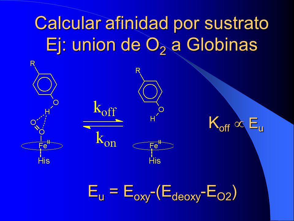 Calcular afinidad por sustrato Ej: union de O 2 a Globinas E u = E oxy -(E deoxy -E O2 ) E u = E oxy -(E deoxy -E O2 ) K off E u