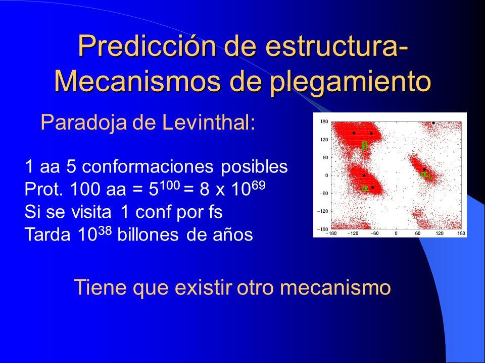 Predicción de estructura- Mecanismos de plegamiento Paradoja de Levinthal: 1 aa 5 conformaciones posibles Prot. 100 aa = 5 100 = 8 x 10 69 Si se visit