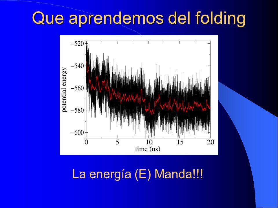 Que aprendemos del folding La energía (E) Manda!!!