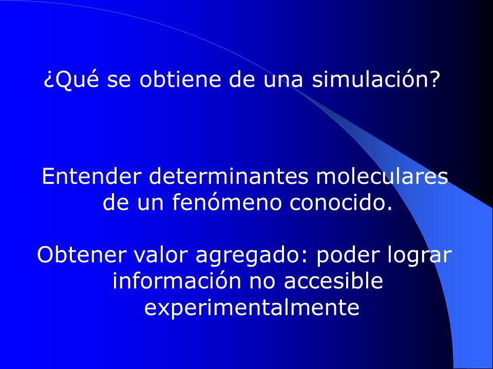¿Qué se obtiene de una simulación? Entender determinantes moleculares de un fenómeno conocido. Obtener valor agregado: poder lograr información no acc