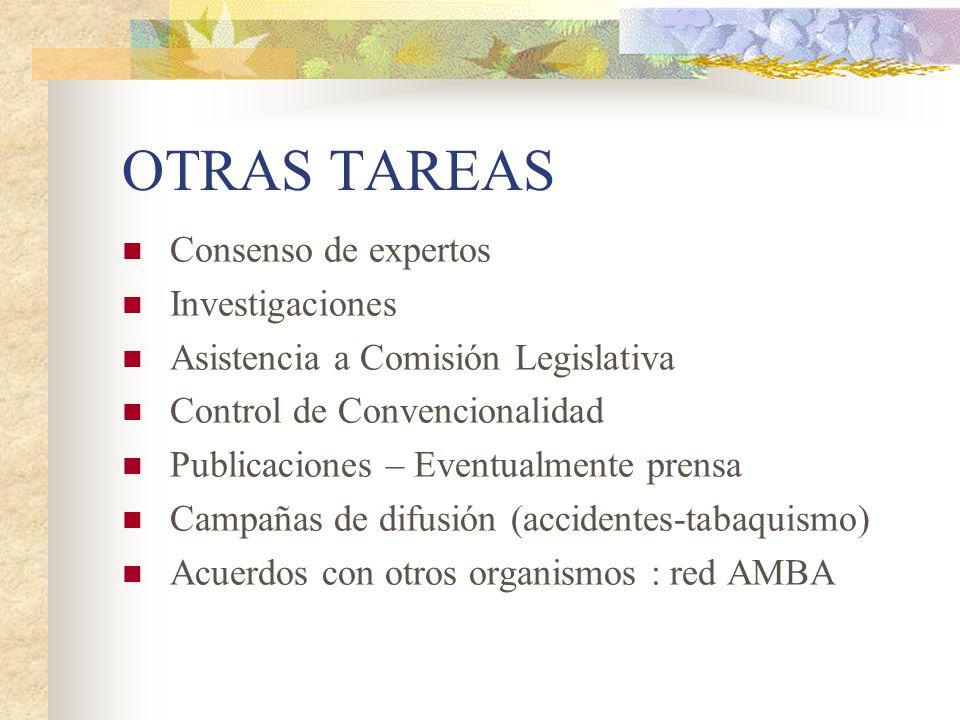 OTRAS TAREAS Consenso de expertos Investigaciones Asistencia a Comisión Legislativa Control de Convencionalidad Publicaciones – Eventualmente prensa C