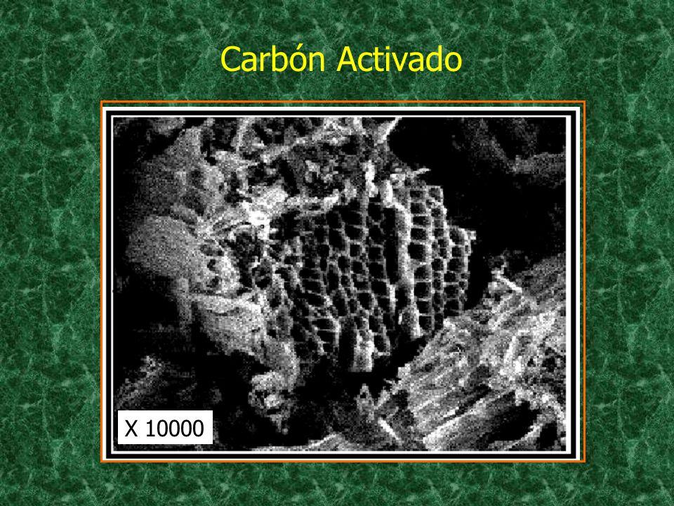 Carbón Activado X 10000