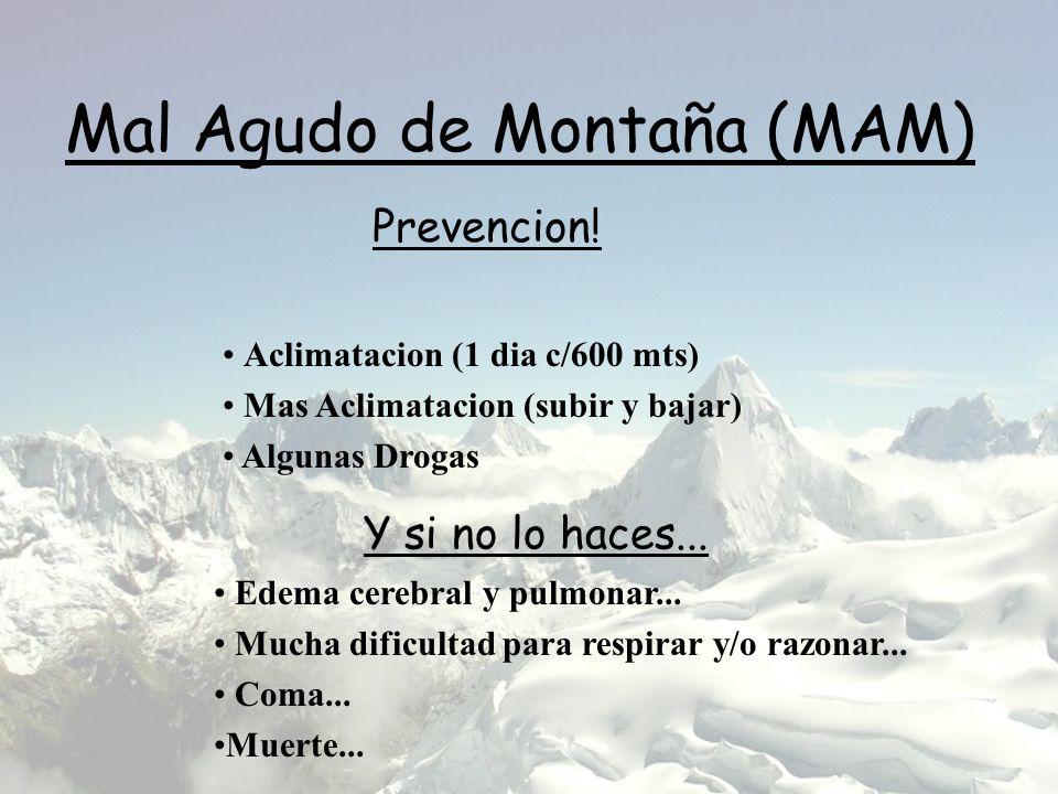 Mal Agudo de Montaña (MAM) Aclimatacion (1 dia c/600 mts) Mas Aclimatacion (subir y bajar) Algunas Drogas Prevencion! Y si no lo haces... Edema cerebr