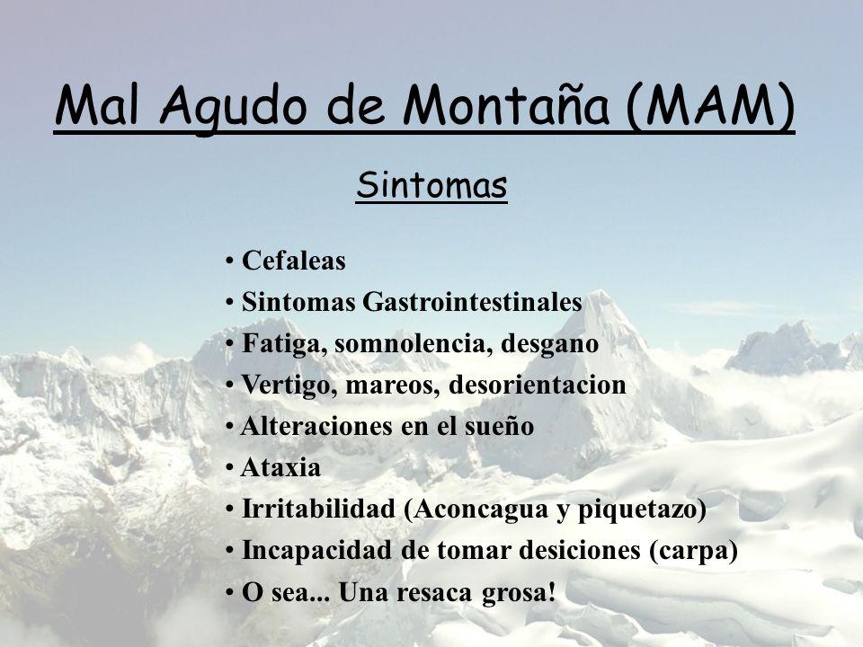 Mal Agudo de Montaña (MAM) Cefaleas Sintomas Gastrointestinales Fatiga, somnolencia, desgano Vertigo, mareos, desorientacion Alteraciones en el sueño