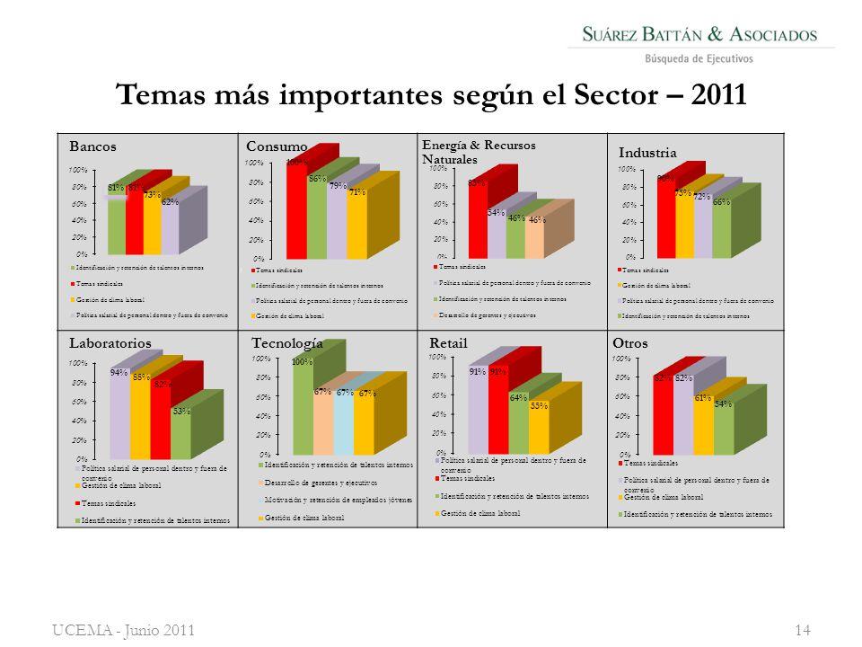 Temas más importantes según el Sector – 2011 UCEMA - Junio 201114
