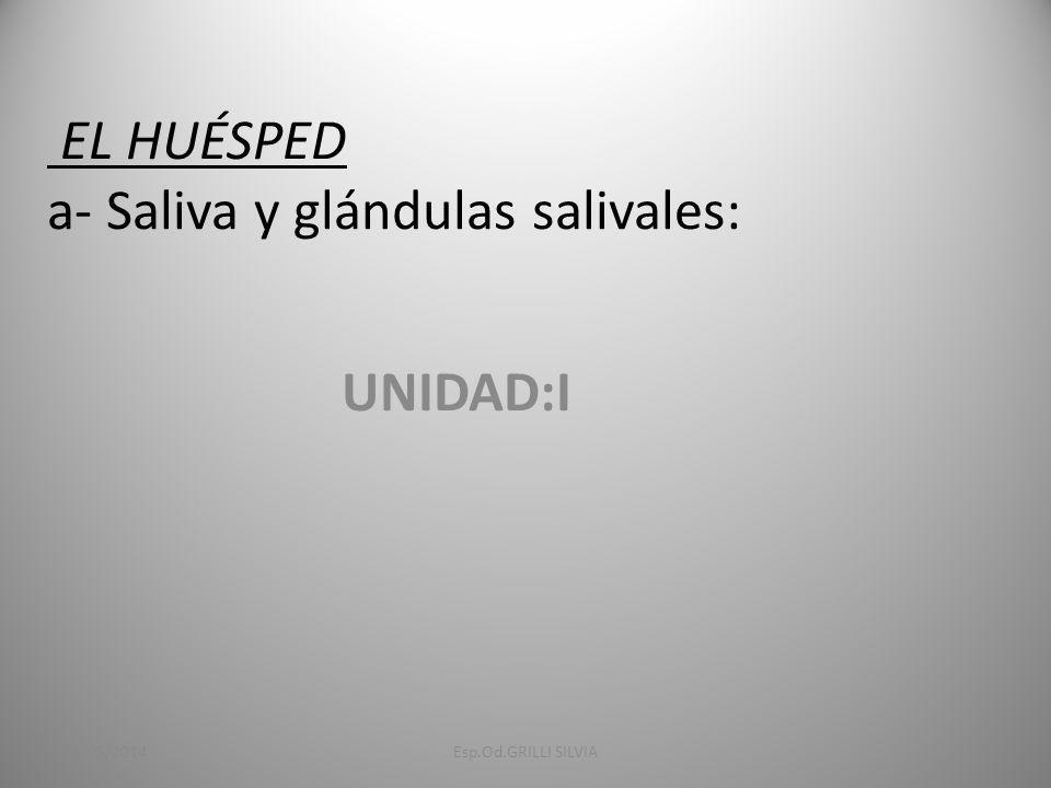 EL HUÉSPED a- Saliva y glándulas salivales: UNIDAD:I 31/05/2014Esp.Od.GRILLI SILVIA