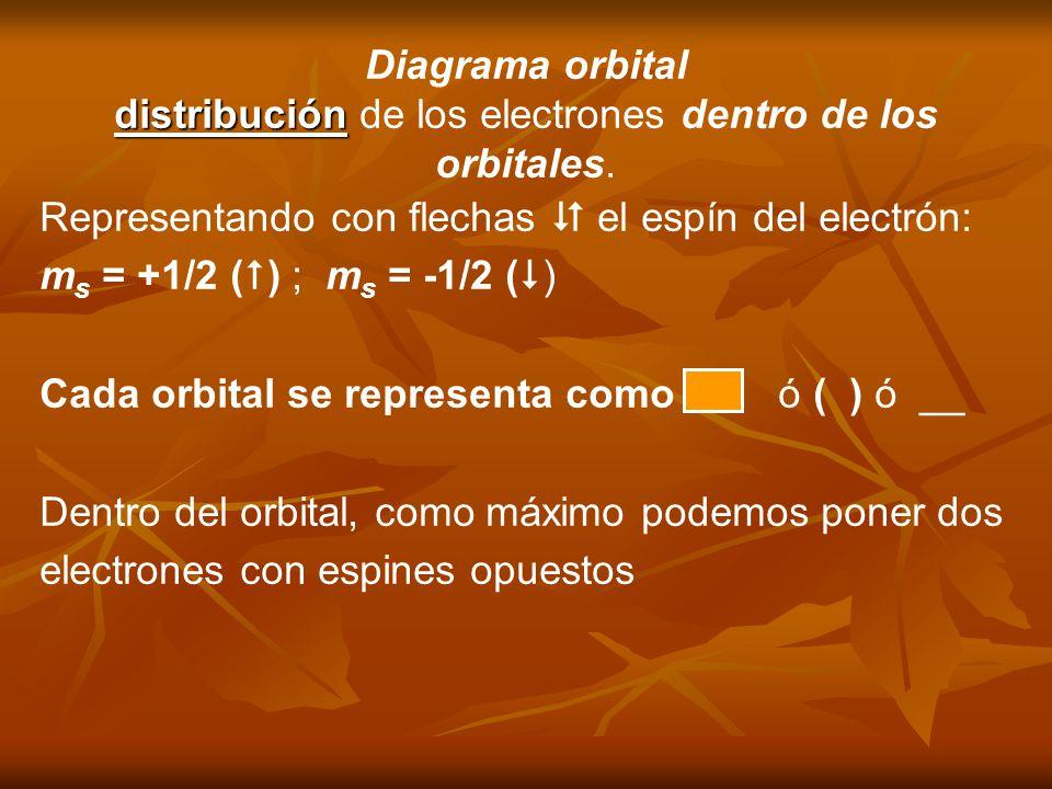 Diagrama orbital distribución distribución de los electrones dentro de los orbitales. Representando con flechas el espín del electrón: m s = +1/2 ( )