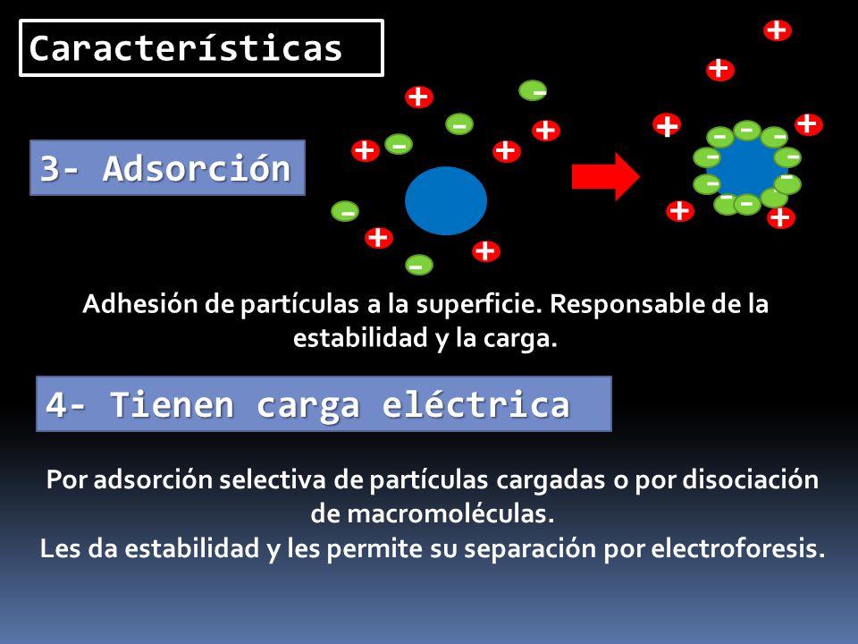 Características 3- Adsorción 4- Tienen carga eléctrica - + + + + + + - - - - - + + + + + - - - - - + - - - - Adhesión de partículas a la superficie. R