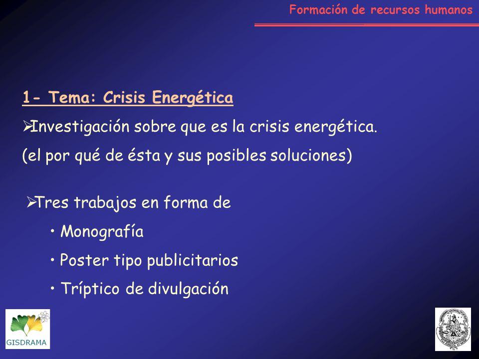 1- Tema: Crisis Energética Investigación sobre que es la crisis energética. (el por qué de ésta y sus posibles soluciones) Tres trabajos en forma de M