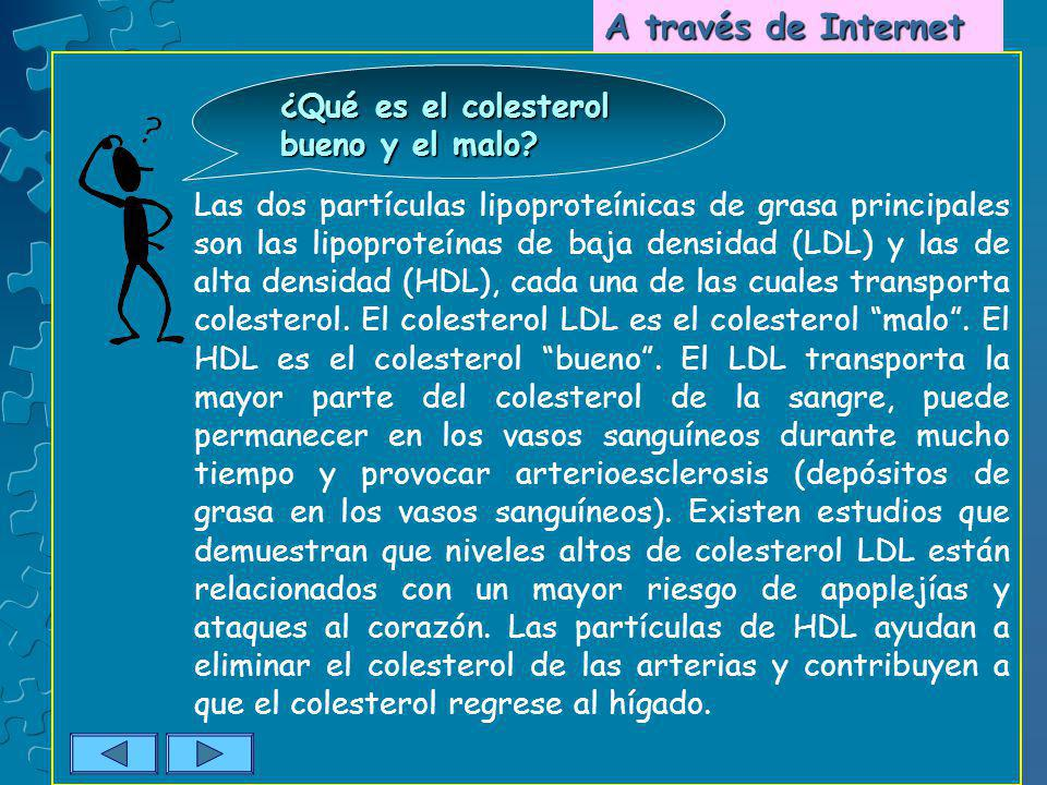 Las dos partículas lipoproteínicas de grasa principales son las lipoproteínas de baja densidad (LDL) y las de alta densidad (HDL), cada una de las cua