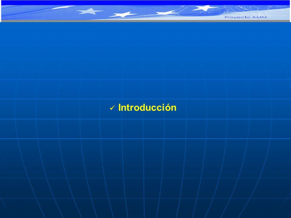 Introducción PROYECTO DE COOPERACIÓN TÉCNICA Y FINANCIERA CE-MERCOSUR: APOYO AL MONITOREO MACROECONÓMICO