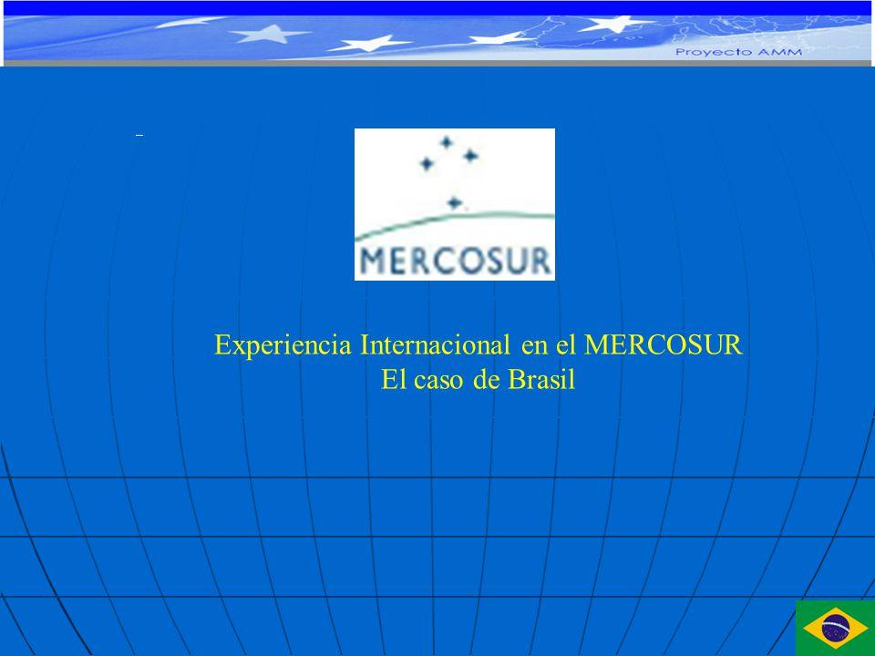 Experiencia Internacional en el MERCOSUR El caso de Brasil