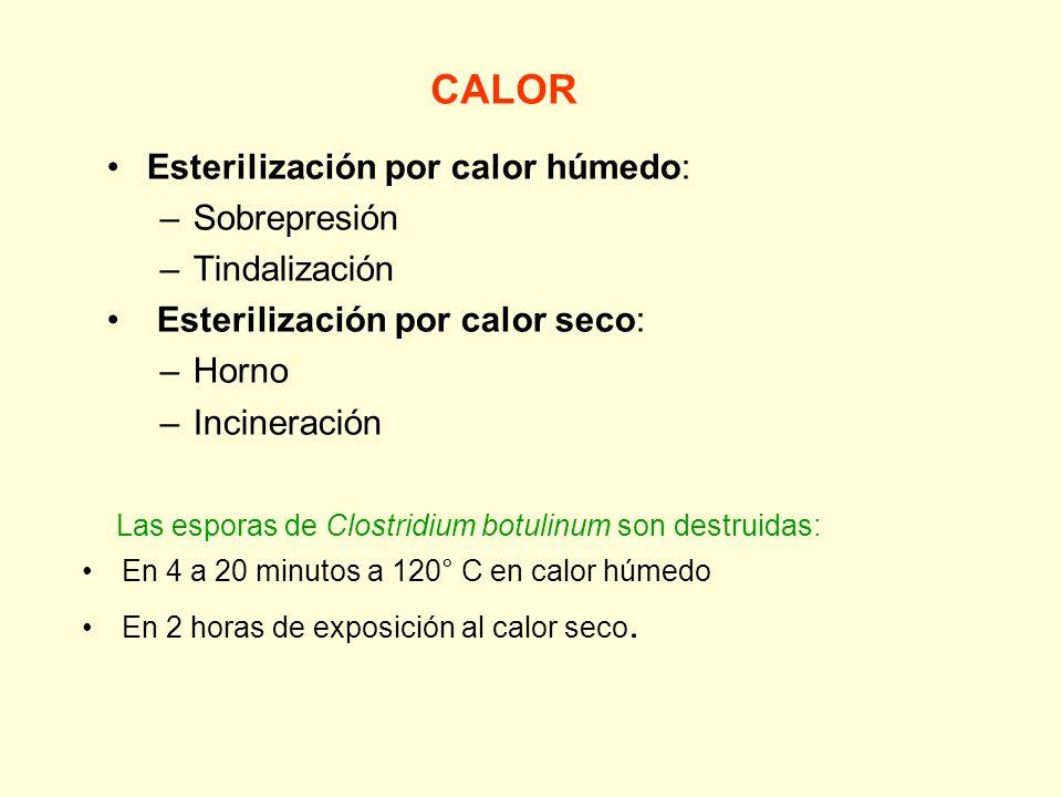 Métodos de esterilización Calor Agentes químicos Radiaciones Filtración
