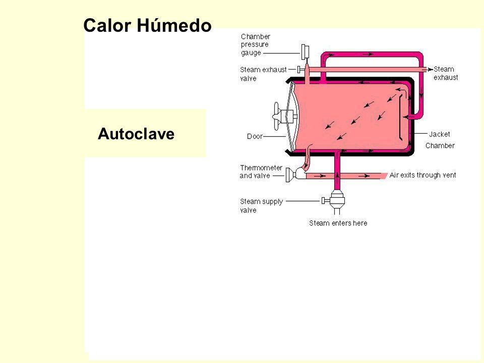 Esterilización por calor húmedo: –Sobrepresión –Tindalización Esterilización por calor seco: –Horno –Incineración CALOR Las esporas de Clostridium bot