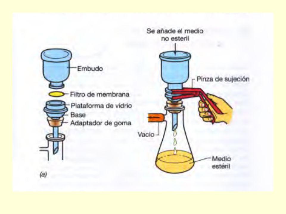 La filtración se utiliza para Emulsiones oleosas, aceites, algunos tipos de pomadas. líquidos biológicossoluciones termolábiles: líquidos biológicos (