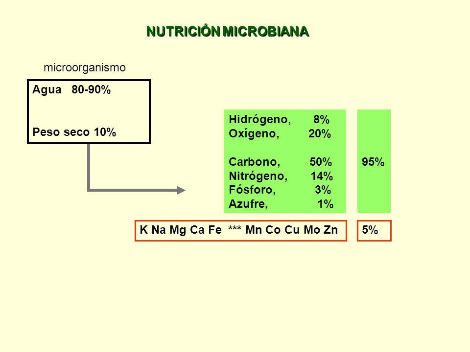 Unidad 2: Crecimiento y metabolismo de los microorganismos 2.1. Nutrición: fuentes de carbono, nitrógeno y oxígeno. Fuentes de fósforo y azufre. Facto