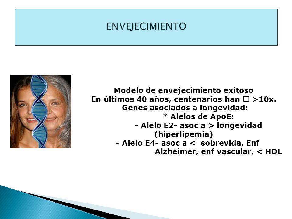 Modelo de envejecimiento exitoso En últimos 40 años, centenarios han >10x.