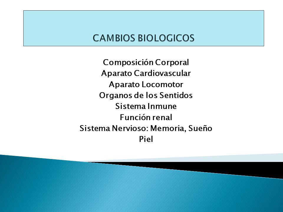 Composición Corporal Aparato Cardiovascular Aparato Locomotor Organos de los Sentidos Sistema Inmune Función renal Sistema Nervioso: Memoria, Sueño Piel
