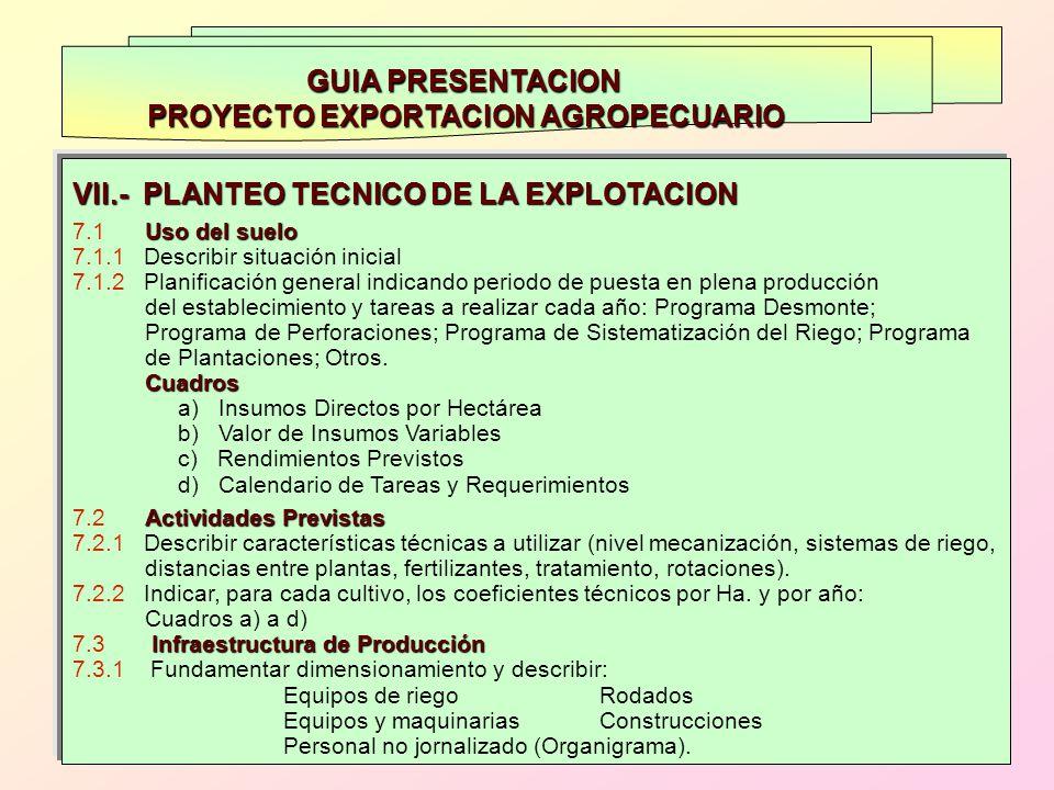GUIA PRESENTACION PROYECTO EXPORTACION AGROPECUARIO VII.- PLANTEO TECNICO DE LA EXPLOTACION Uso del suelo 7.1 Uso del suelo 7.1.1 Describir situación