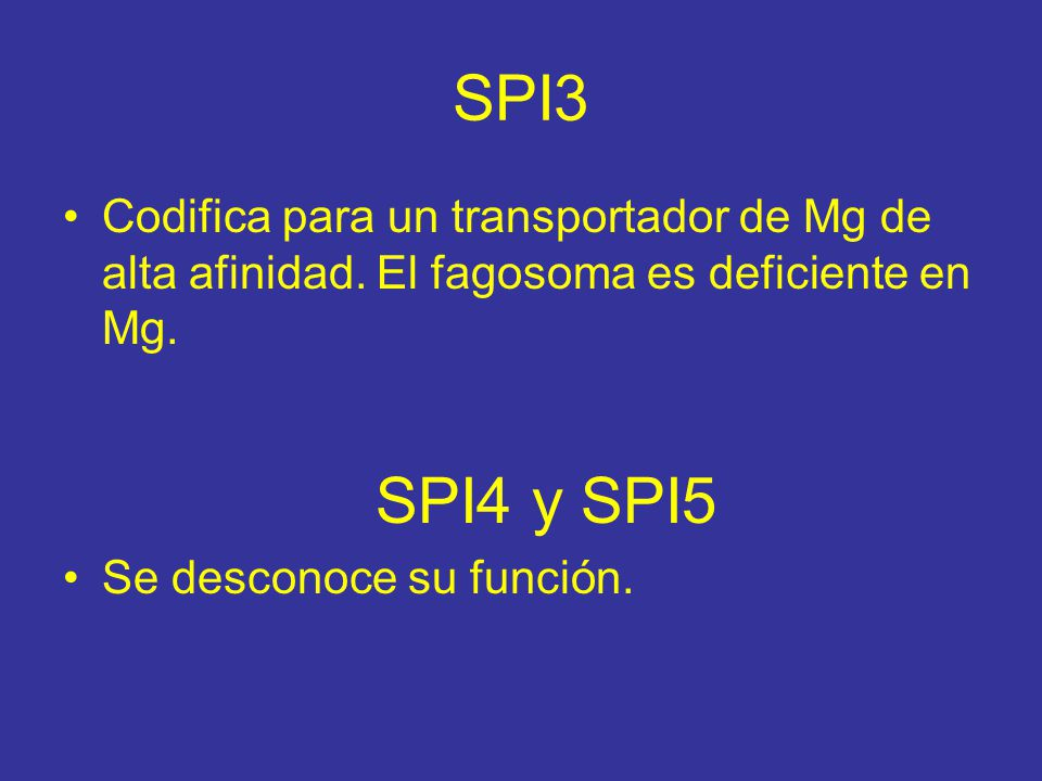 SPI3 Codifica para un transportador de Mg de alta afinidad.