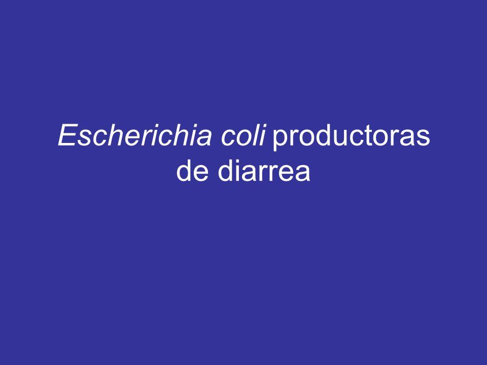 Escherichia coli productoras de diarrea