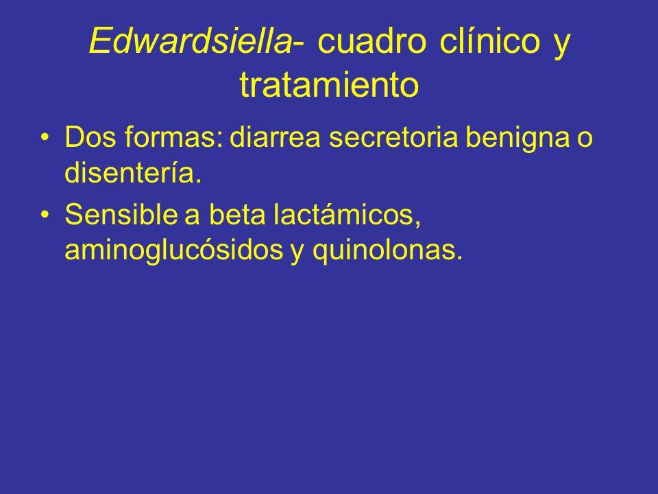 Edwardsiella- cuadro clínico y tratamiento Dos formas: diarrea secretoria benigna o disentería.