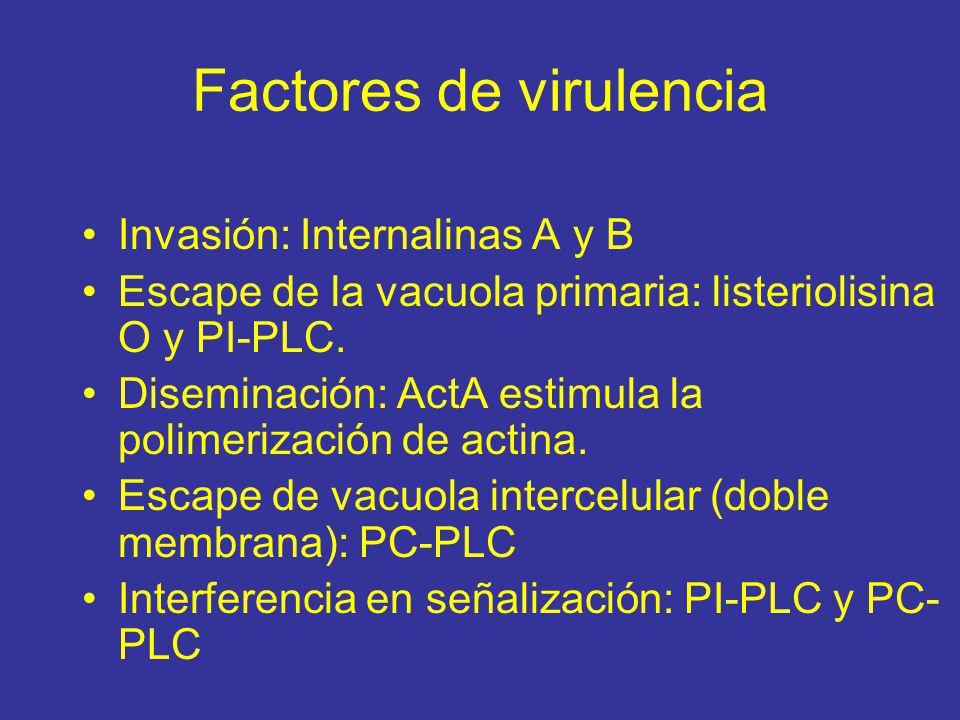 Factores de virulencia Invasión: Internalinas A y B Escape de la vacuola primaria: listeriolisina O y PI-PLC.