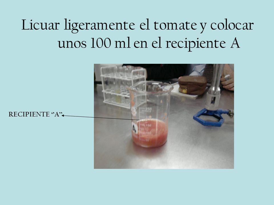 Licuar ligeramente el tomate y colocar unos 100 ml en el recipiente A RECIPIENTE A
