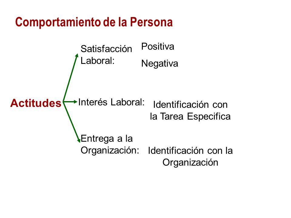 Comportamiento de la Persona Satisfacción Laboral: Positiva Negativa Actitudes Interés Laboral: Entrega a la Organización: Identificación con la Tarea Especifica Identificación con la Organización
