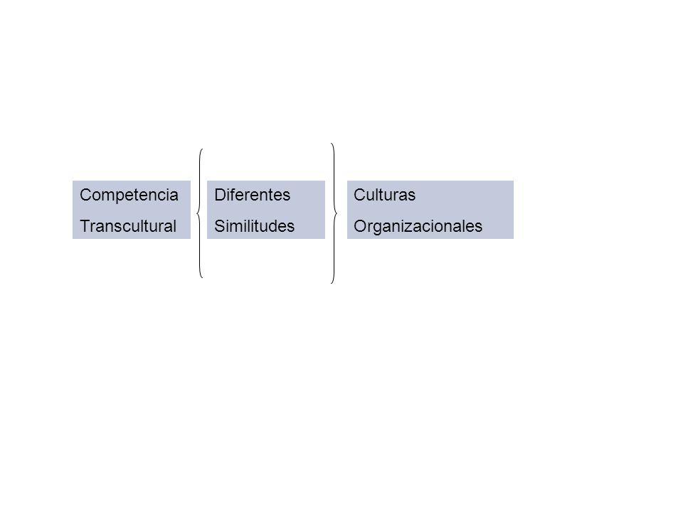 Competencia Transcultural Diferentes Similitudes Culturas Organizacionales