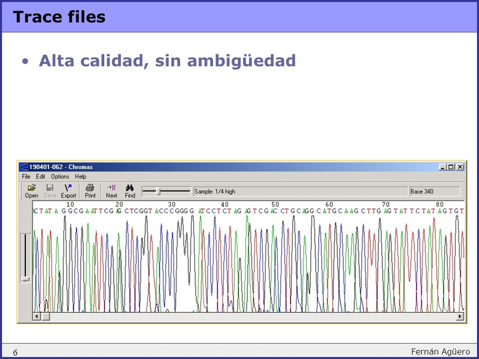 6 Fernán Agüero Trace files Alta calidad, sin ambigüedad