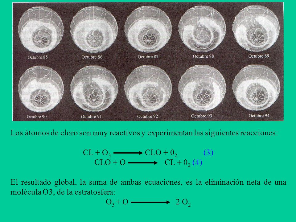 Los átomos de cloro son muy reactivos y experimentan las siguientes reacciones: CL + O 3 CLO + 0 2 (3) CLO + O CL + 0 2 (4) El resultado global, la suma de ambas ecuaciones, es la eliminación neta de una molécula O3, de la estratosfera: O 3 + O 2 O 2