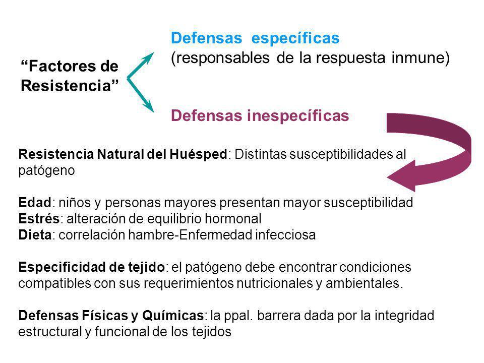 Resistencia Natural del Huésped: Distintas susceptibilidades al patógeno Edad: niños y personas mayores presentan mayor susceptibilidad Estrés: altera