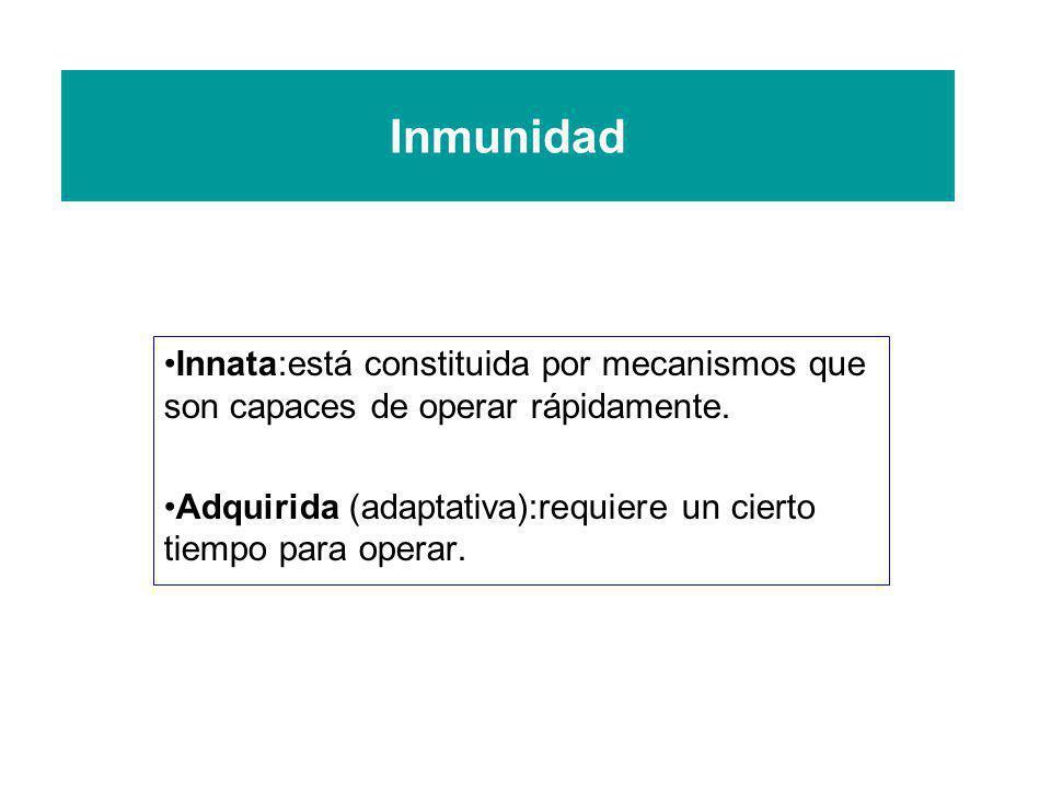 Inmunidad Innata:está constituida por mecanismos que son capaces de operar rápidamente. Adquirida (adaptativa):requiere un cierto tiempo para operar.